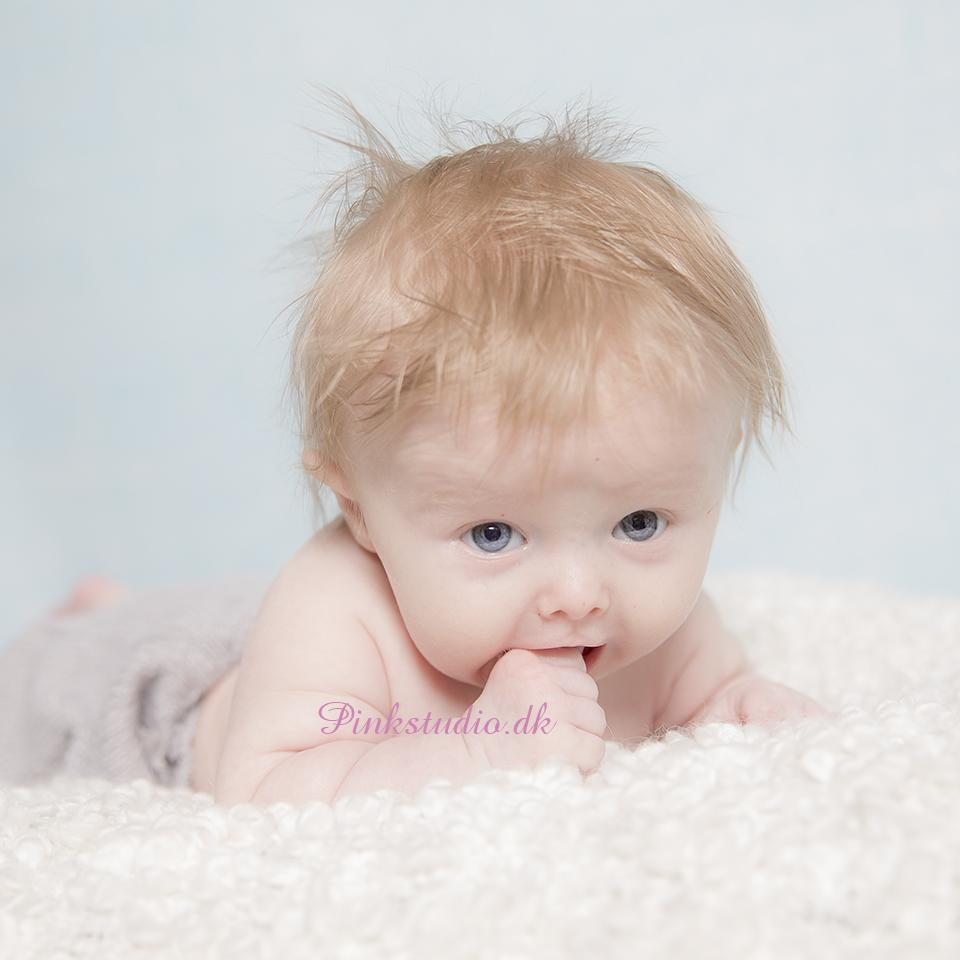 Pinkstudio by Angelina Devine Nikolai-3-mdr-122 Kvartalspakke GIVE AWAY Baby Nyheder Portræt Tilbud